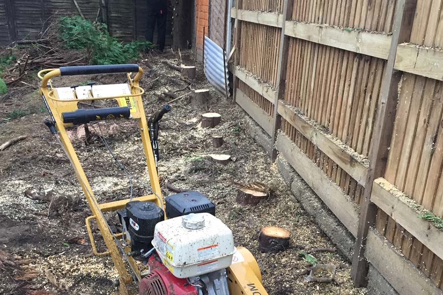 Stump Grinding Tree Surgery in Suffolk